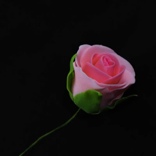 Edible Cake Toppers & Cake Decorating Supplies NZ - Gumpaste Icing Sugar Pink Rose Flower - The Rose Factory - The Biggest Flower Collection in New Zealand