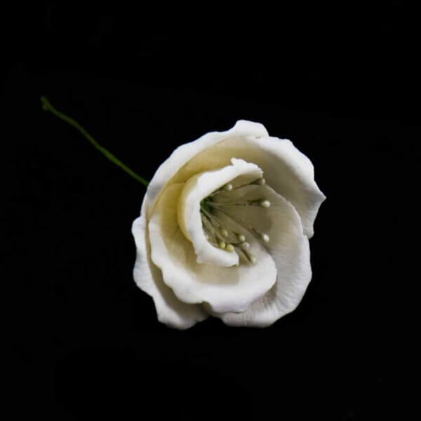 Lisianthus or Prairie Gentian or Eustoma gumpaste sugar flower from The Rose Factory - Cake Decorating Supplies Auckland New Zealand